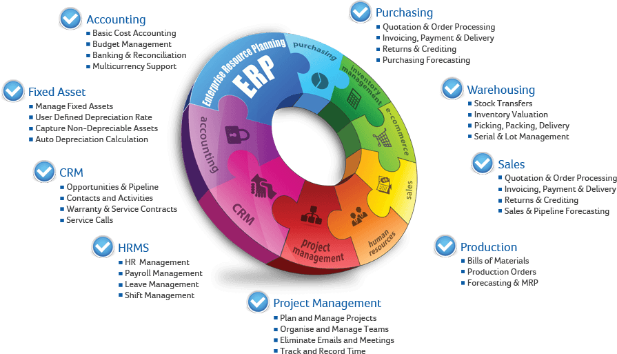 Gyration of ERP software as a life blood of business